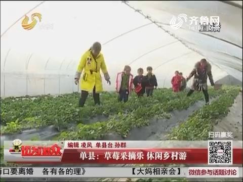 单县:草莓采摘乐 休闲乡村游