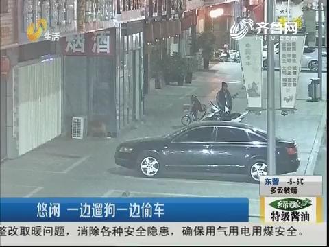 济宁:悠闲 一边遛狗一边偷车