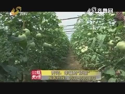 """20180101《品牌农资龙虎榜》:齐河——幸福的""""烦恼"""""""