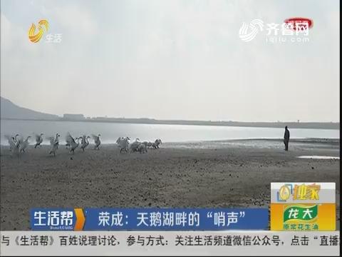 """荣成:天鹅湖畔的""""哨声"""""""