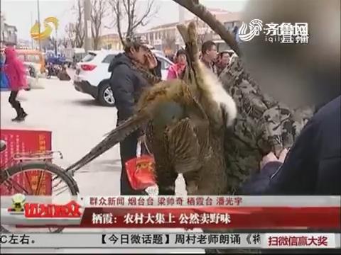 【群众新闻】栖霞:农村大集上 公然卖野味