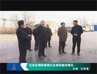 王宏志调研章锦片区规划建设情况