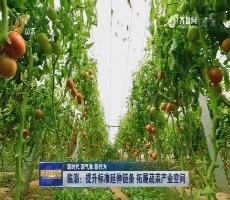 【新时代 新气象 新作为】临淄:提升标准延伸链条 拓展蔬菜产业空间