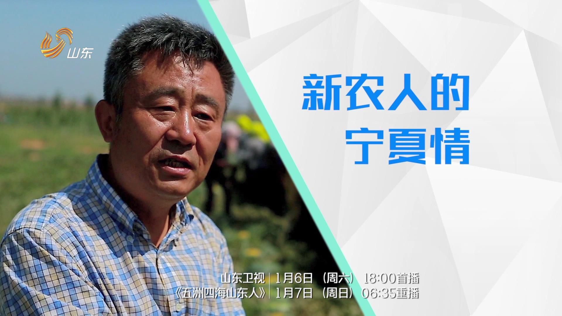 冯锡鸿:新农人的宁夏情