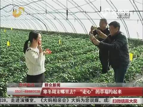 """【群众新闻】济南:寒冬周末哪里去?""""走心""""的草莓约起来"""