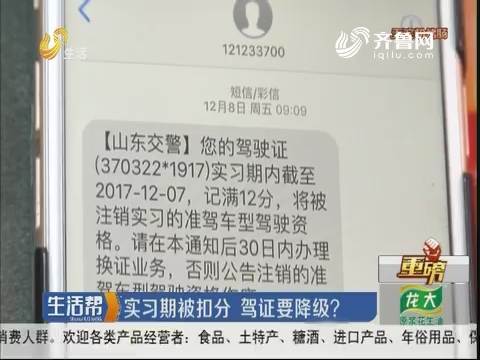 【重磅】淄博:实习期被扣分 驾证要降级?