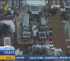 济南迎来2018年第一场雪