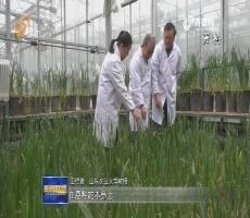 2017国家科学技术奖揭晓 山东18个项目获奖