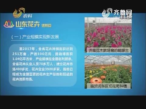 20180110《农科直播间》:创新山东看花卉