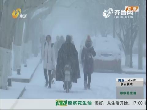 青岛:银装素裹 大雪装点岛城