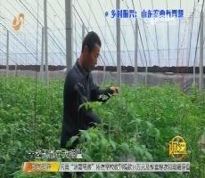 调查:乡村振兴——山东农业有智慧