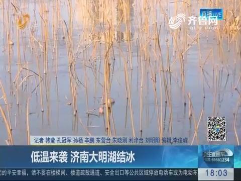 低温来袭 济南大明湖结冰