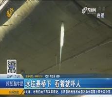 济南:冰挂悬桥下 看着就吓人