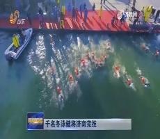 千名冬泳健将济南竞技