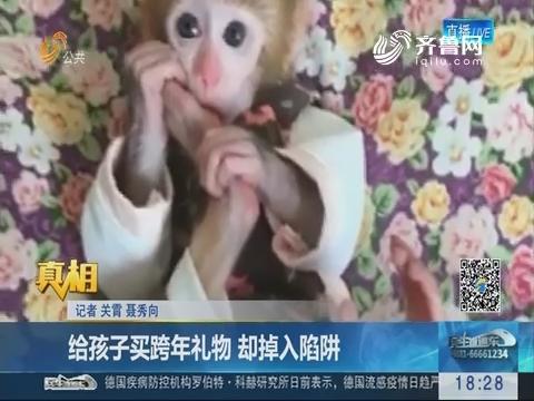 【真相】济南:给孩子买跨年礼物 却掉入陷阱