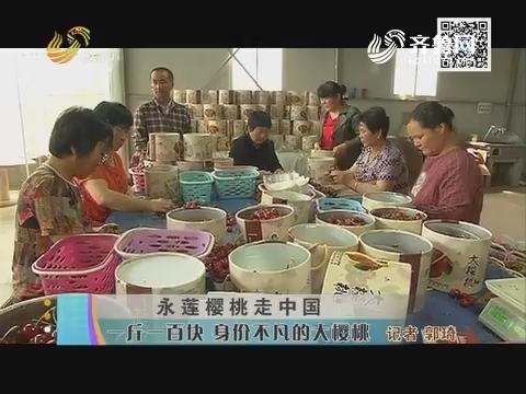 永莲樱桃走中国 一斤一百块 身价不凡的大樱桃