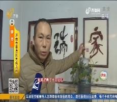 """【能工巧匠】章丘:枯树变宝 """"根树""""大师——李良"""