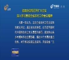 山东省政协党组召开扩大会议 深入学习贯彻全省农村工作会议精神