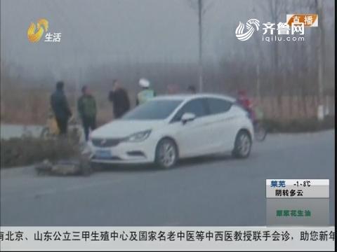 济宁:过马路不减速 一下撞倒两人