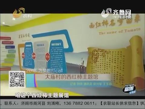 【2018 为梦想打call】大庙村的西红柿主题馆