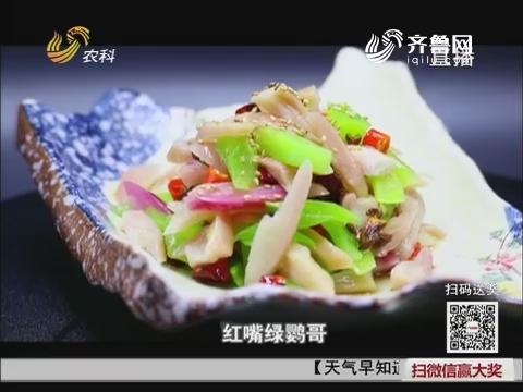 大厨教做家常菜:红嘴绿鹦哥