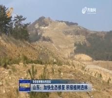 【环保督察整改再落实】 山东:加快生态修复 积极植树造林