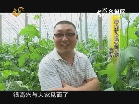 """【品牌农资龙虎榜】寿光:""""善变""""的丝瓜"""