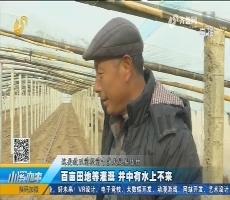 莒南:百亩田地等灌溉 井中有水上不来