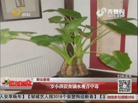 【群众新闻】三岁小孩误食滴水观音中毒