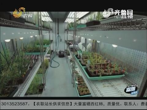 德澳特美国农业之旅(六) 植物的客房:最先进的植物生长设施