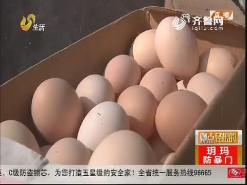 """绿色""""散养鸡"""" 只为好鸡蛋!"""