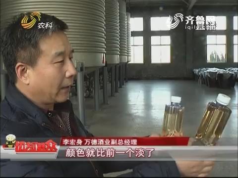 【群众新闻】无棣:色浅糖度低 万斤无花果酒疑被掉包