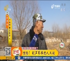 【凡人善举】济南:惊险!割芦苇掉进人工湖