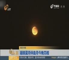 超级蓝月伴血月1月31日晚亮相