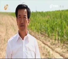 【时代先锋】十九大代表风采录——朱玉国