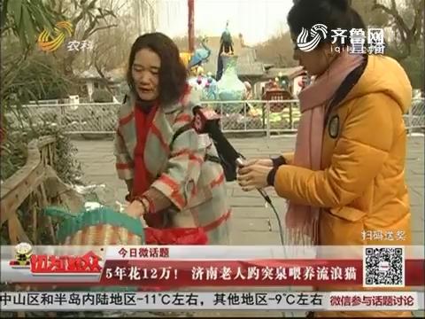 【今日微话题】5年花12万!济南老人趵突泉喂养流浪猫