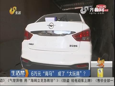 """枣庄:6万元""""海马"""" 成了""""大玩具""""?"""