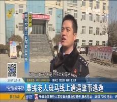 枣庄:晨练老人斑马线上遭遇肇事逃逸