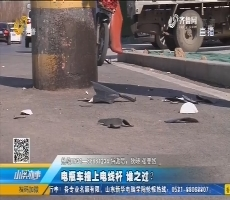 济南:电瓶车撞上电线杆 谁之过?