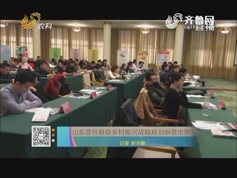 山东首份县级乡村振兴战略规划纲要出炉