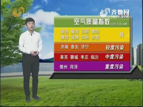 看天气:气温将升高 春节暖融融