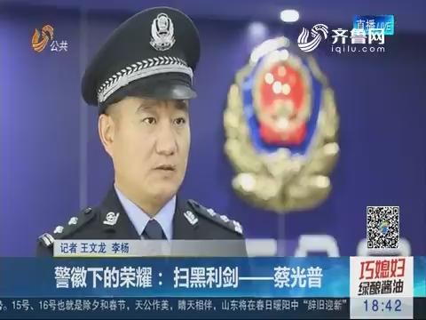 警徽下的荣耀:扫黑利剑——蔡光普