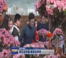 【喜迎中国年】鲜花俏争春 春联送吉祥