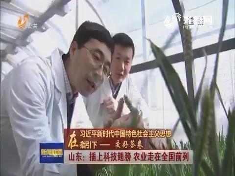 【在习近平新时代中国特色社会主义思想指引下——交好答卷】山东:插上科技翅膀 农业走在全国前列
