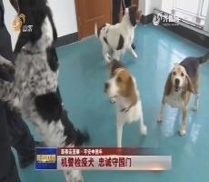 【新春走基层·平安中国年】机警检疫犬 忠诚守国门