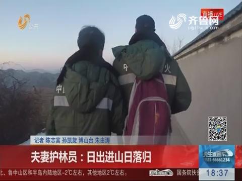 淄博:夫妻护林员 日出进山日落归