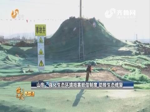 20180218《生态山东》:临邑——铁腕治污 绿色发展