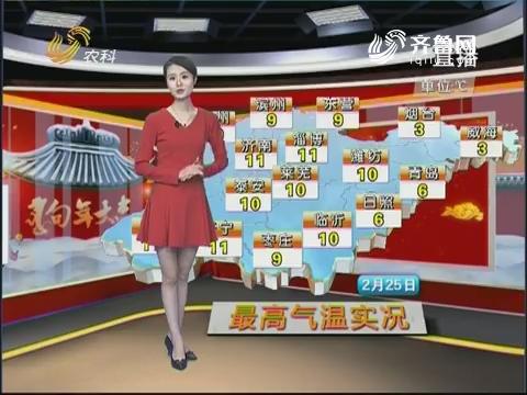 看天气:气温节节升 喜迎春花开