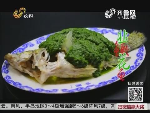 大厨教做家常菜:韭花鳜鱼