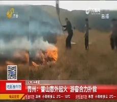 青州:香山意外起火 游客合力扑救